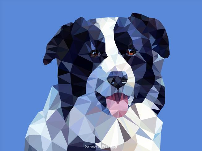 Abstract Border Collie Dog Portrait In Low Poly Vector.