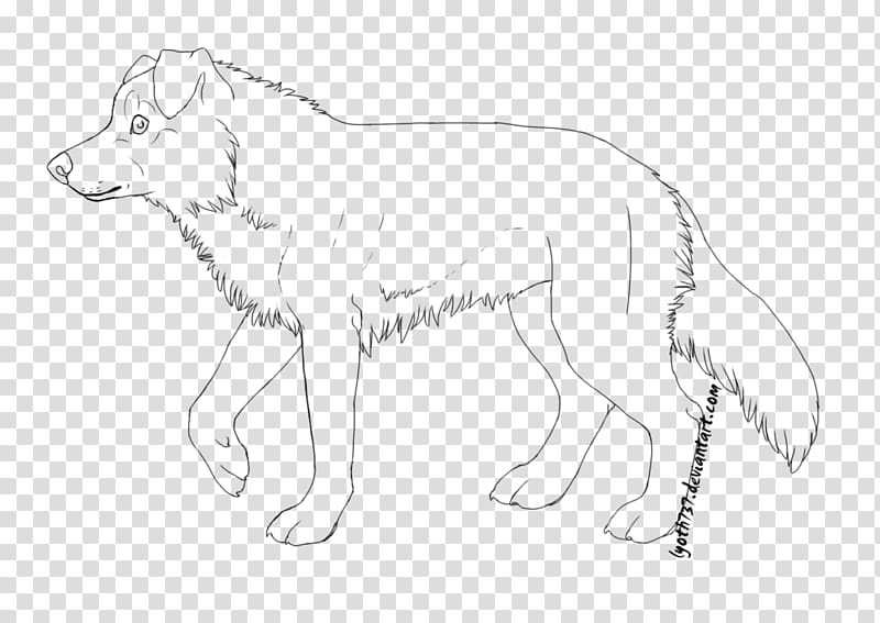 Line art Border Collie Dog breed Rough Collie , border.