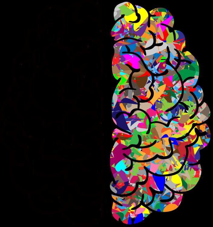 Organ,Brain,Line PNG Clipart.