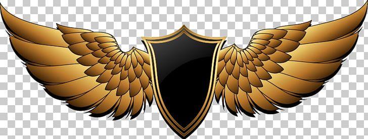 PFC Berkut Armyansk Buffalo Wing FC Ocean Kerch Logo PNG.