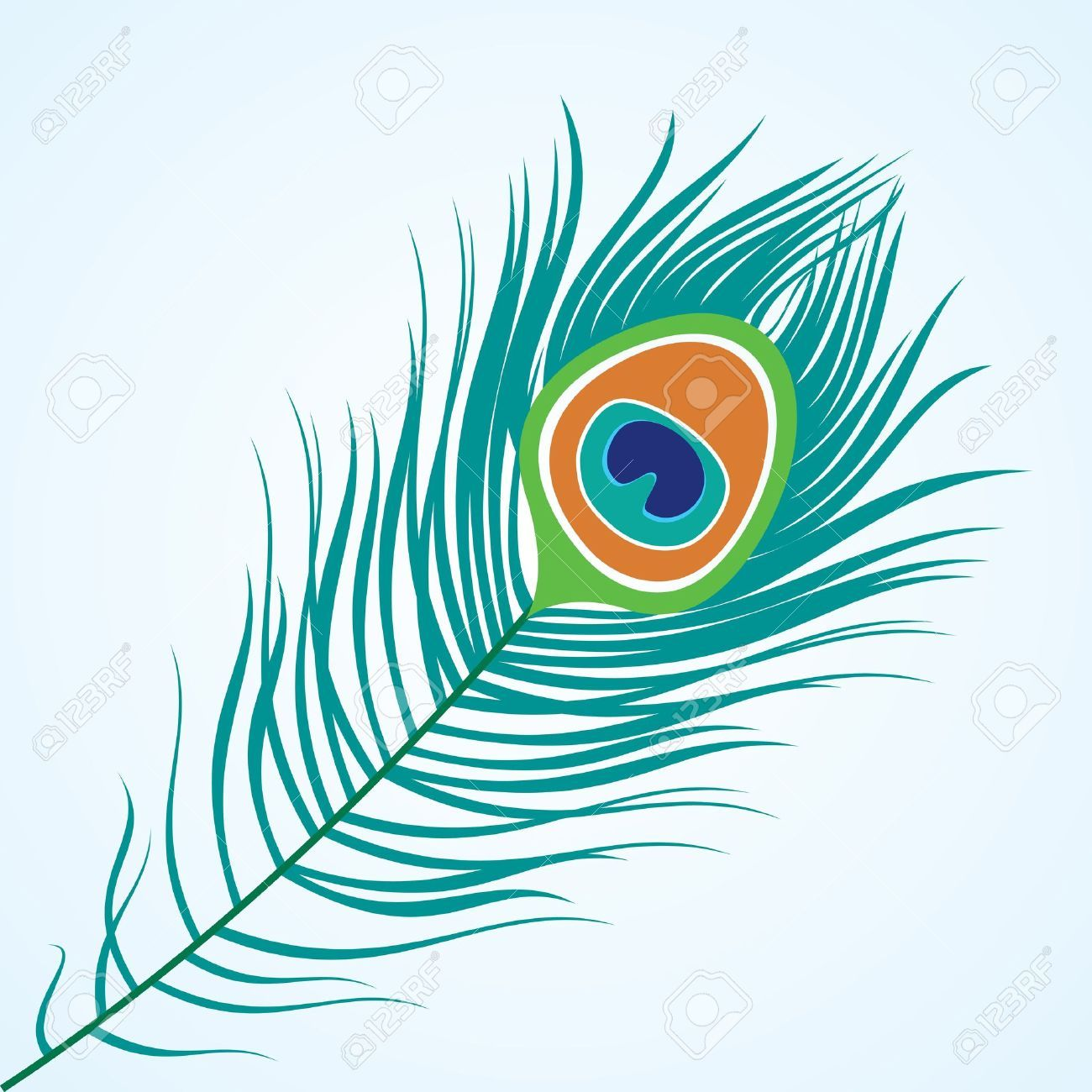 Peacock Stock Illustrations, Cliparts And Royalty Free.