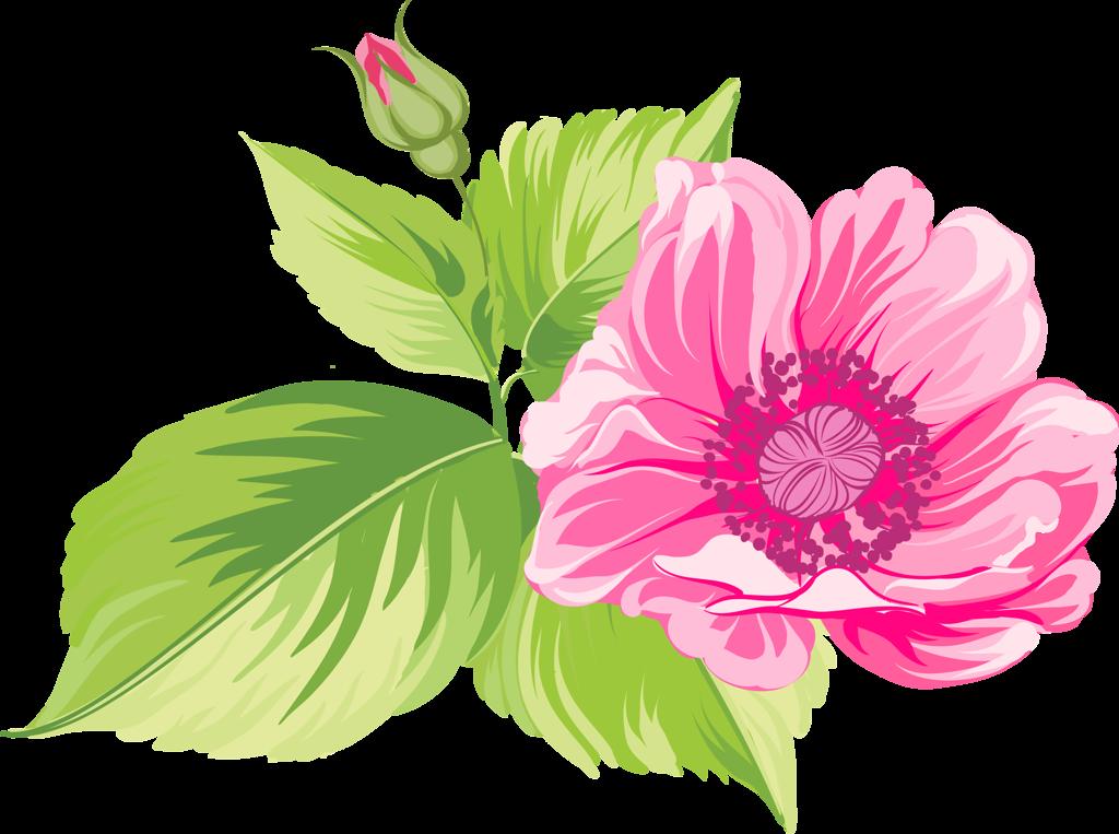 Рисованные цветы в формате PNG in 2019.