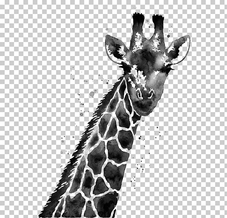 Giraffe White Painting (Three Panel) Black and white.