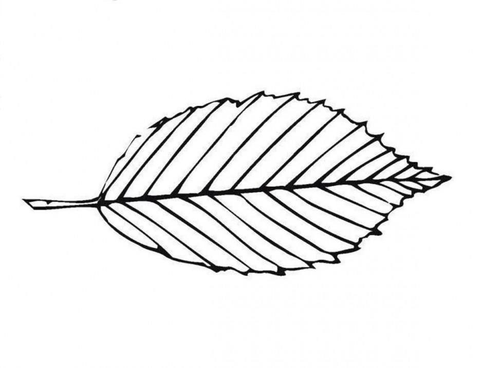 Free Black And White Leaf Design, Download Free Clip Art.