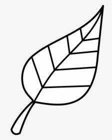 Black Leaf PNG Images, Free Transparent Black Leaf Download.