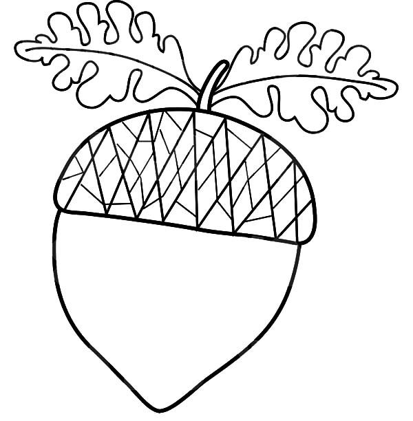 Acorn With Oak Leaf Coloring Pages.