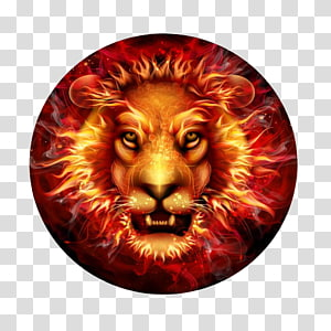 Abstract Lionhead transparent background PNG cliparts free.