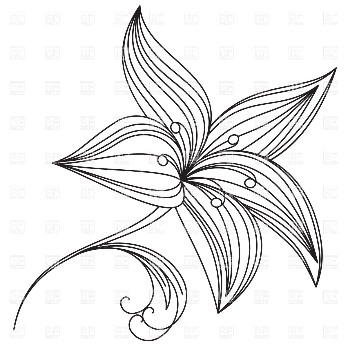Abstract Beautiful Flower Of Lily Outline 16294 Plants And.