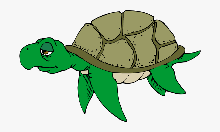 Hawaiian Sea Turtle Clipart Free Images 2.