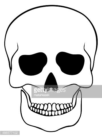 Abstract Skull Isolated ON White premium clipart.