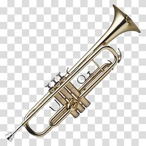 Cut out trumpet, brass.
