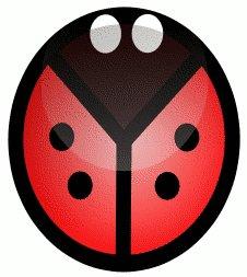 Free ladybug.