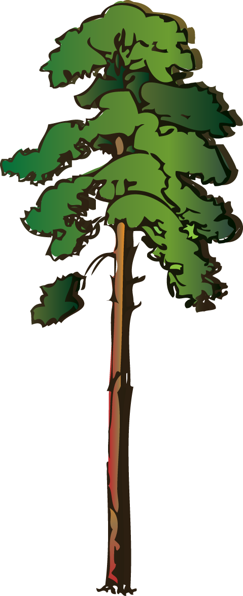 Acacia Tree Clip Art.