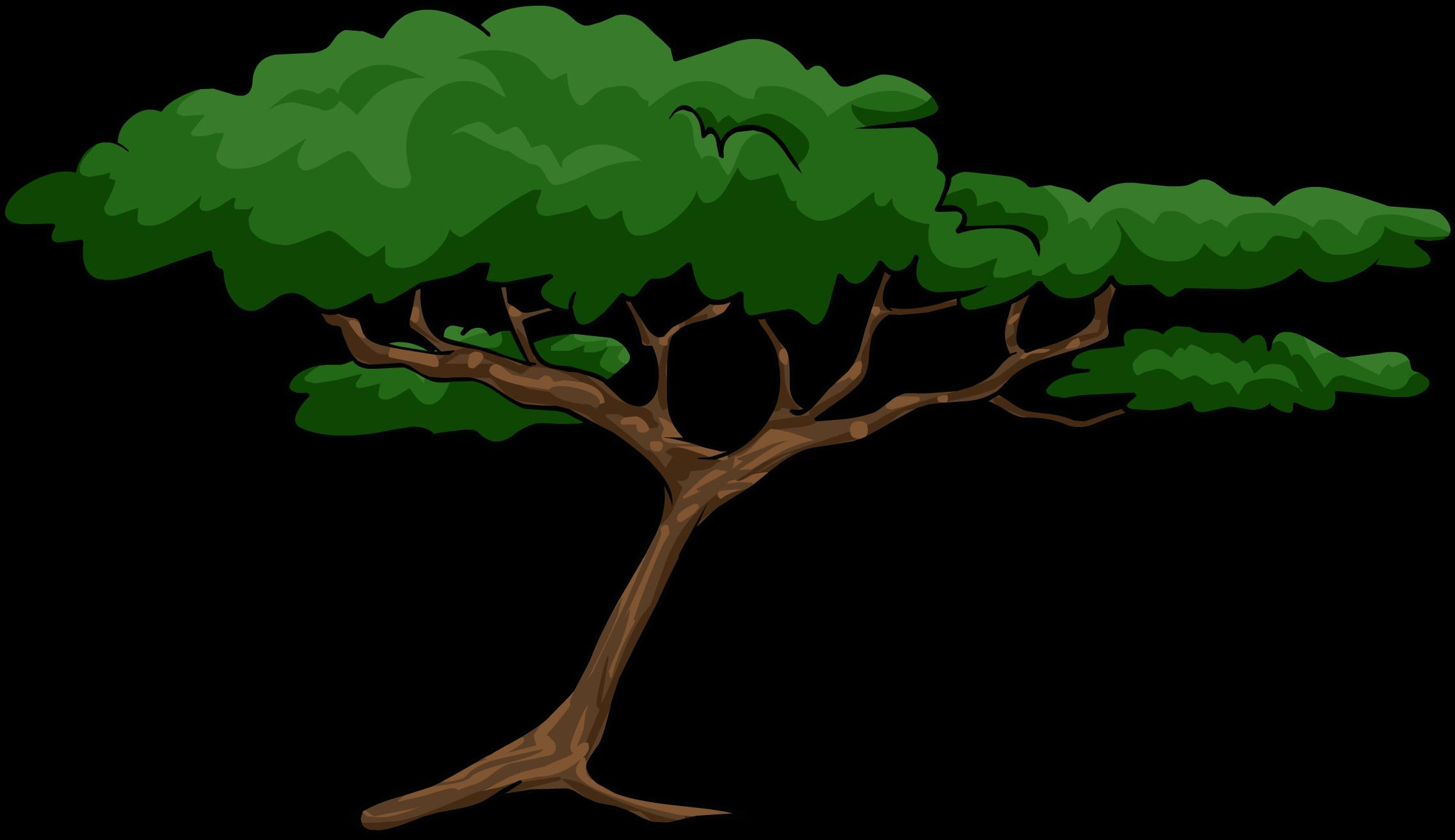 Acacia Tree Clipart.