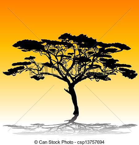 Acacia leaves Clip Art Vector Graphics. 372 Acacia leaves EPS.