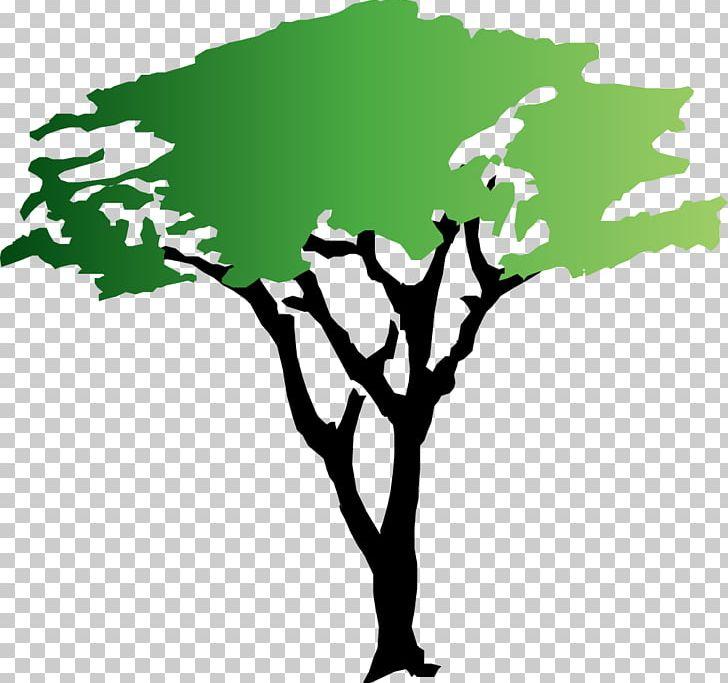 Tree Acacia PNG, Clipart, Acacia, Black And White, Black.