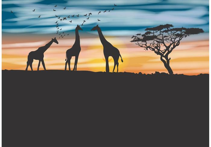 Acacia Tree and Giraffe Vector Background.