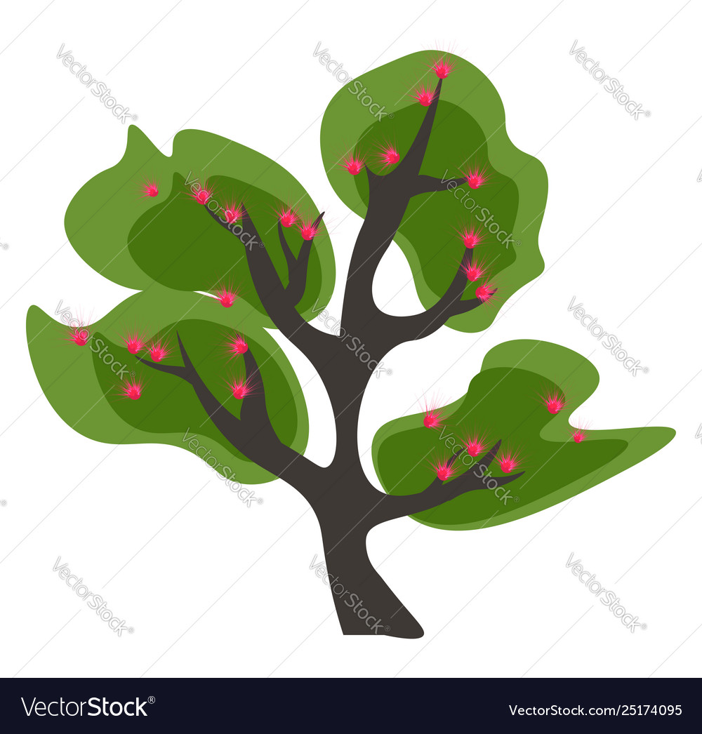 Clipart a tall branched green acacia tree.
