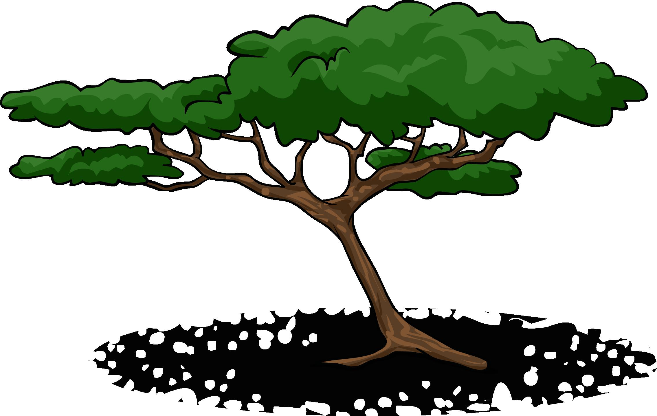 Acacia Trees Clipart.