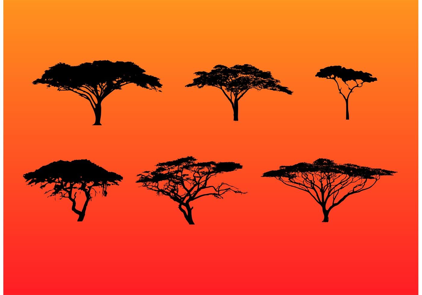 Acacia Tree Silhouette Free Vector Art.