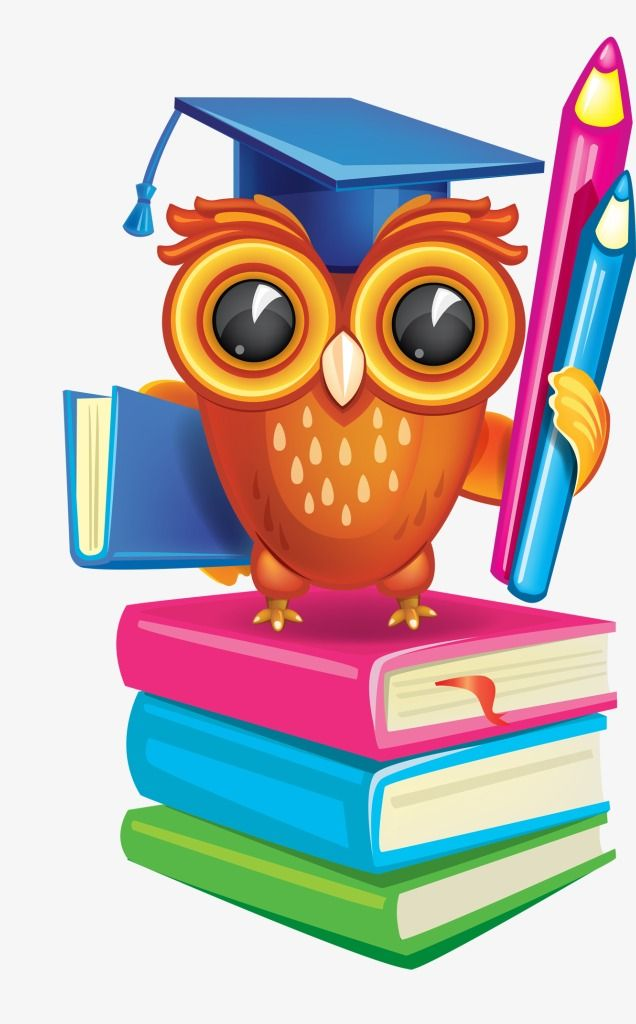 Academic Success Owl.