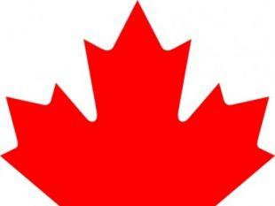 Flag Of Acadia Canada clip art.