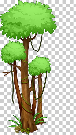 115 amazon Rainforest PNG cliparts for free download.