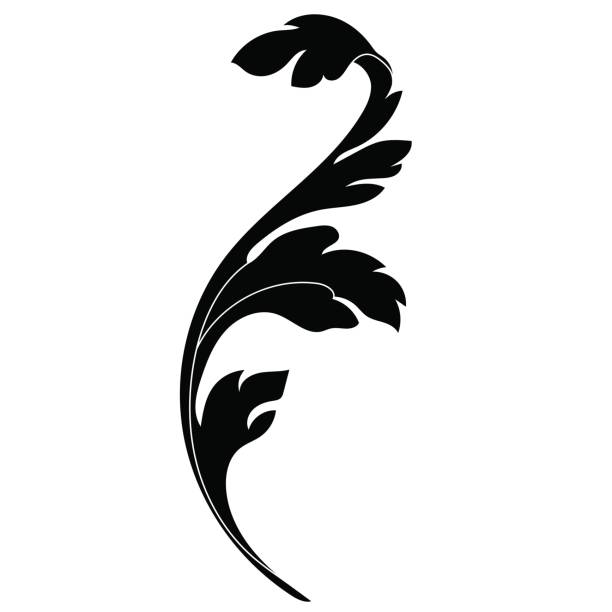 Best Acanthus Leaf Illustrations, Royalty.