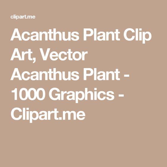 Acanthus Plant Clip Art, Vector Acanthus Plant.