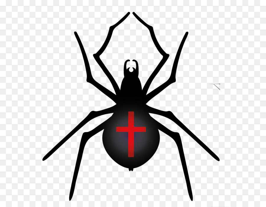 Halloween Spider Png Clipart Acc Halloween Transparent Image.