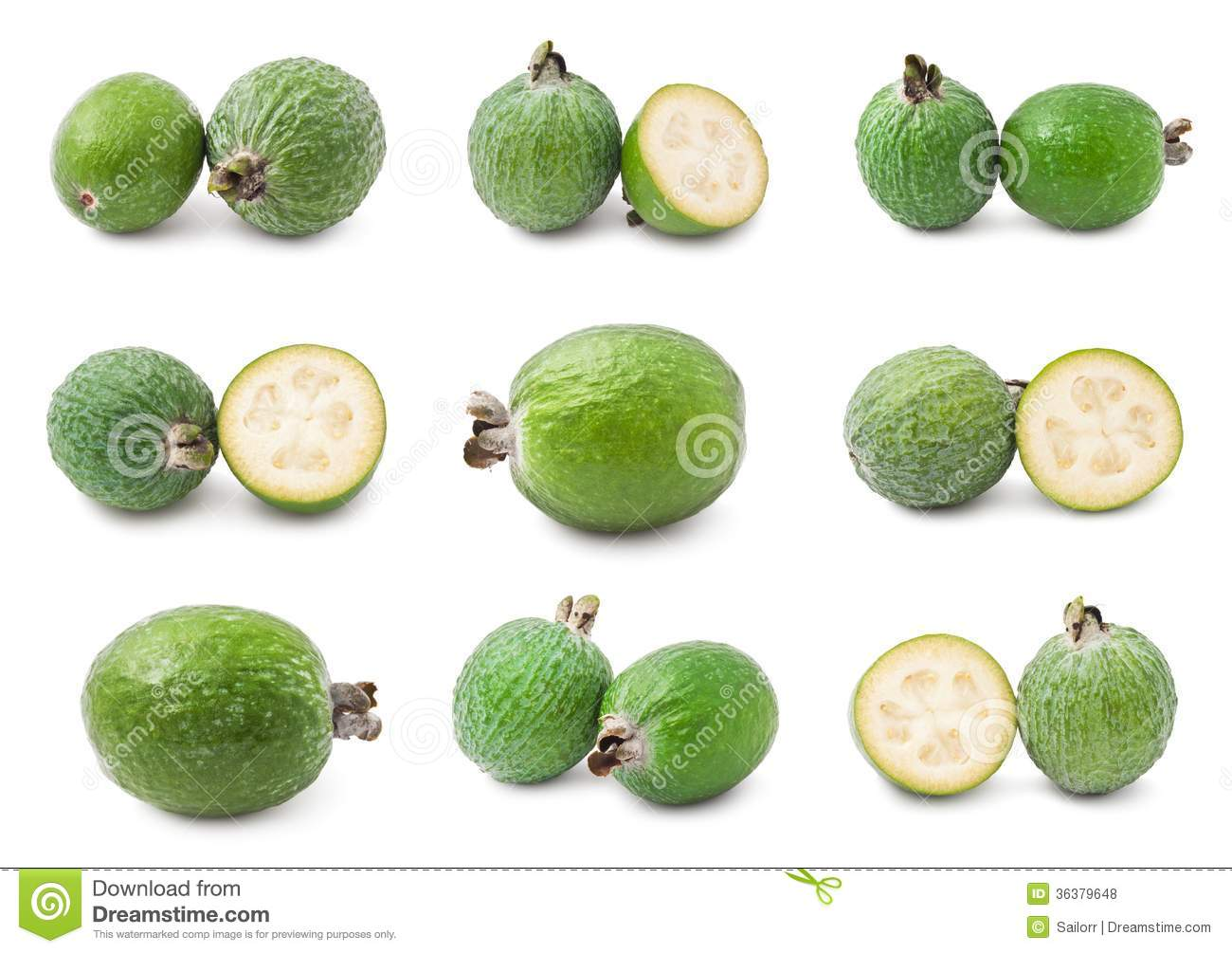 Feijoa Royalty Free Stock Photos.