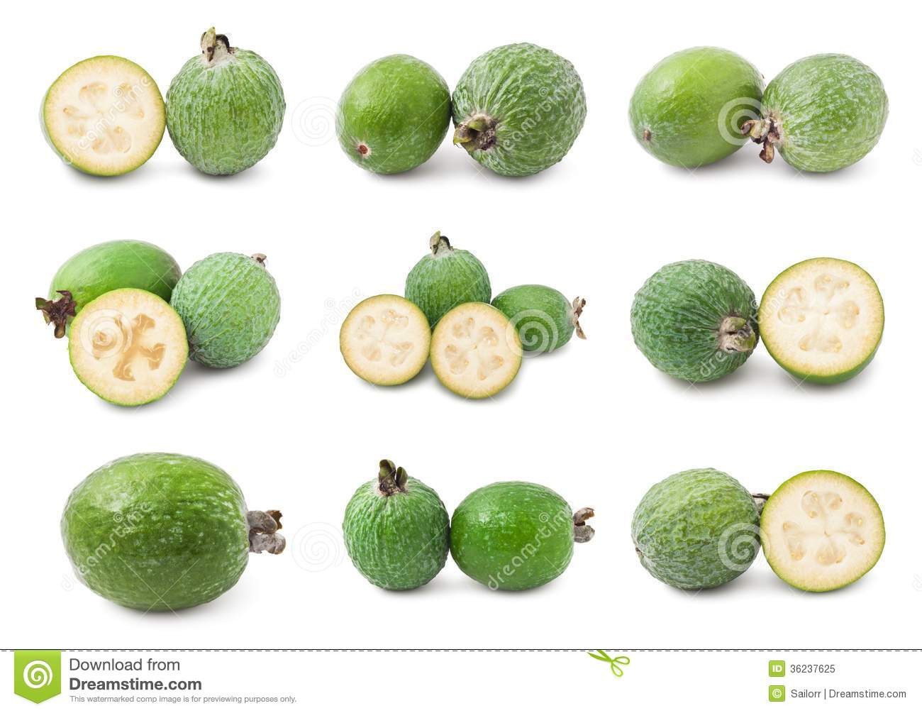 Feijoa Royalty Free Stock Photo.