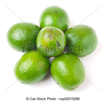 Stock Image of Tropical fruit feijoa Acca sellowiana isolated on.