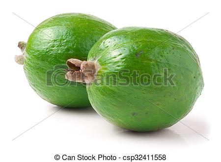 Stock Images of Tropical fruit feijoa Acca sellowiana isolated on.