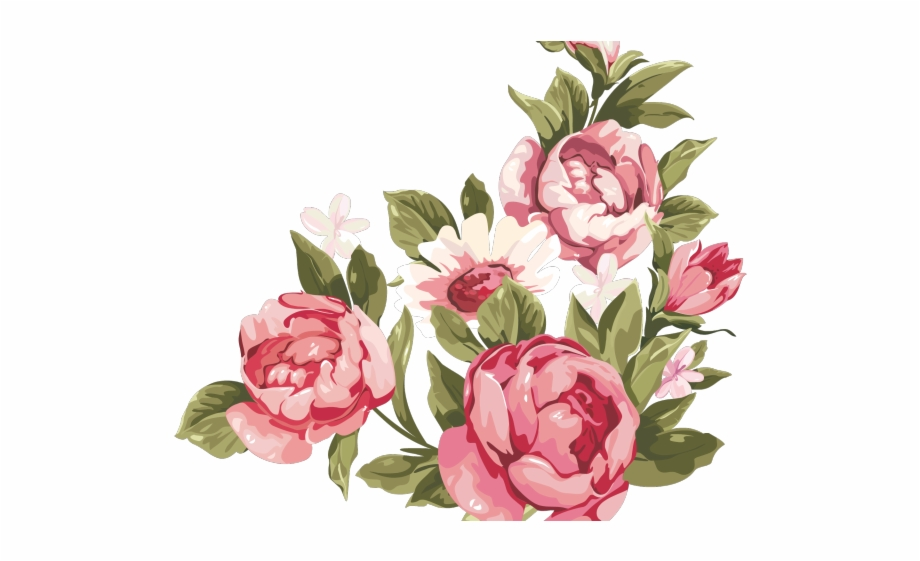Peony Clipart Floral Accent Transparent Background Rose.