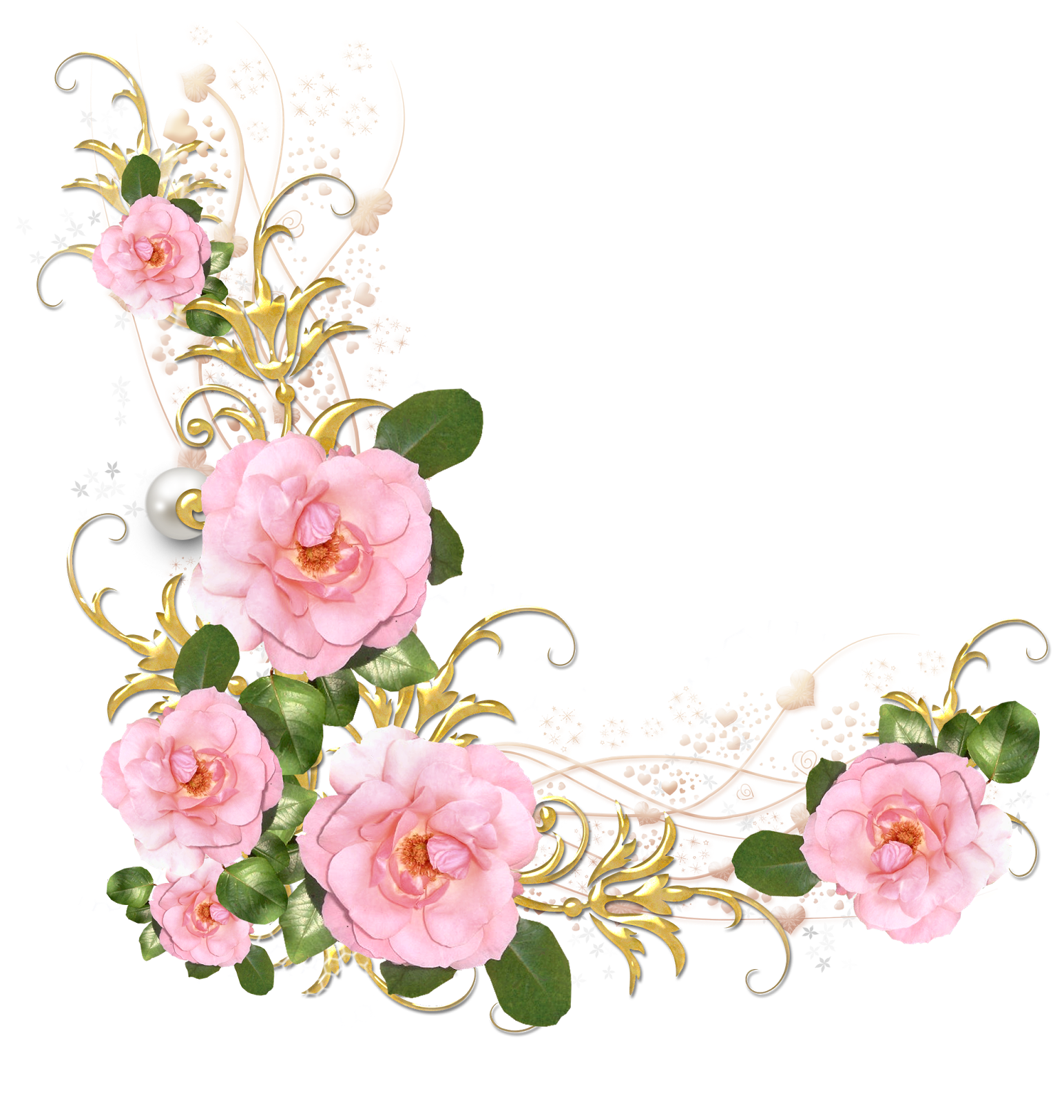 Peonies clipart floral accent, Peonies floral accent.