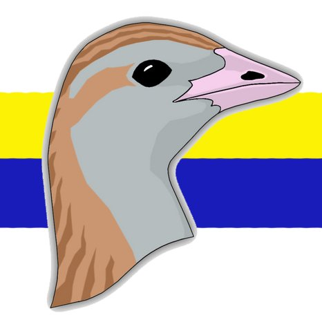 "Gyr Crakes on Twitter: ""Wow! Siberian Accentor."