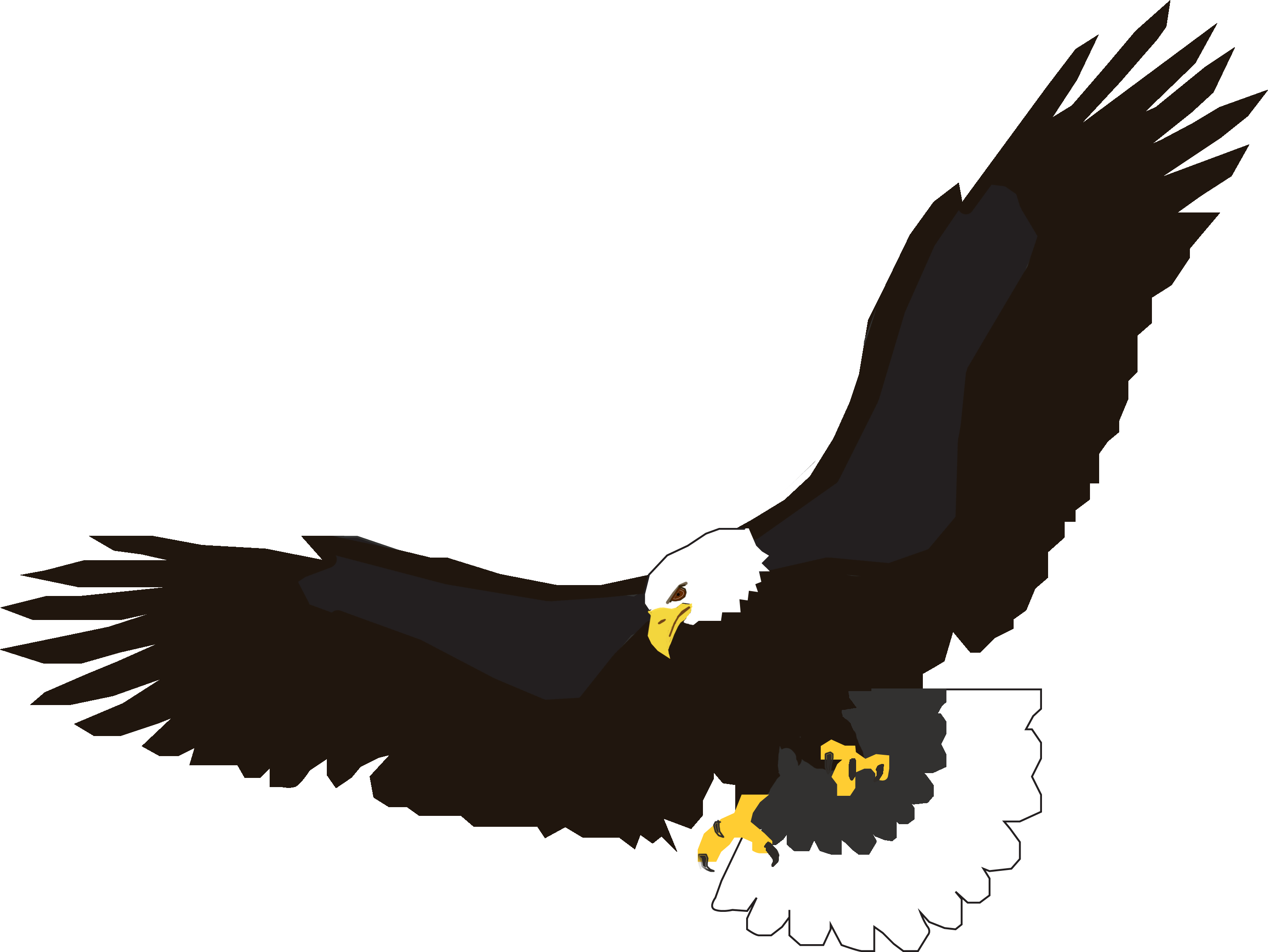 Flying Eagle PNG Transparent image.