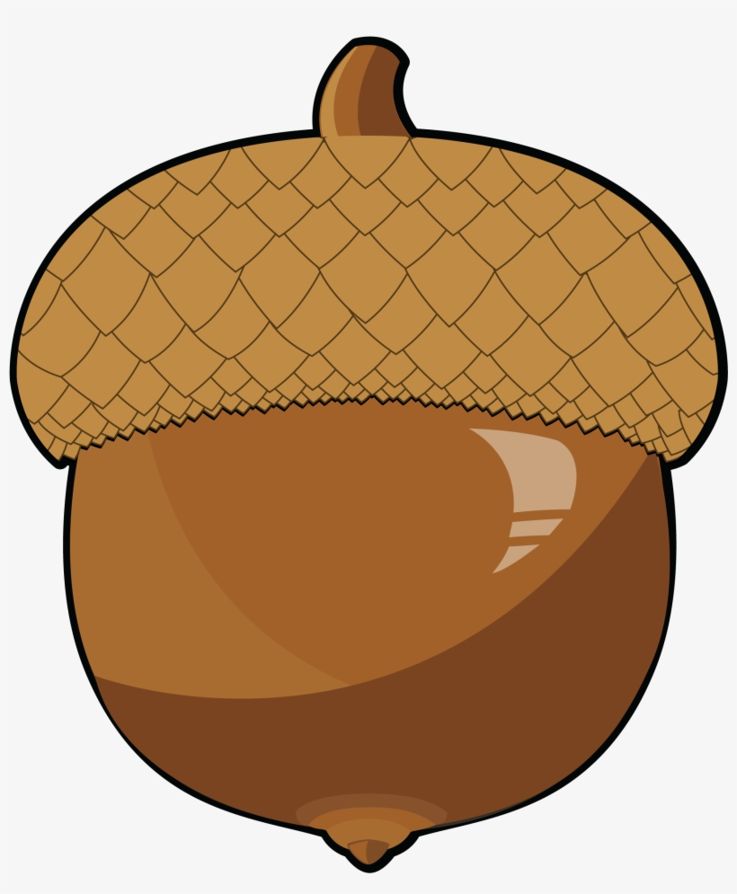 Acorn Clipart Food.