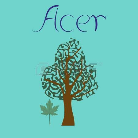 290 Acer Stock Vector Illustration And Royalty Free Acer Clipart.