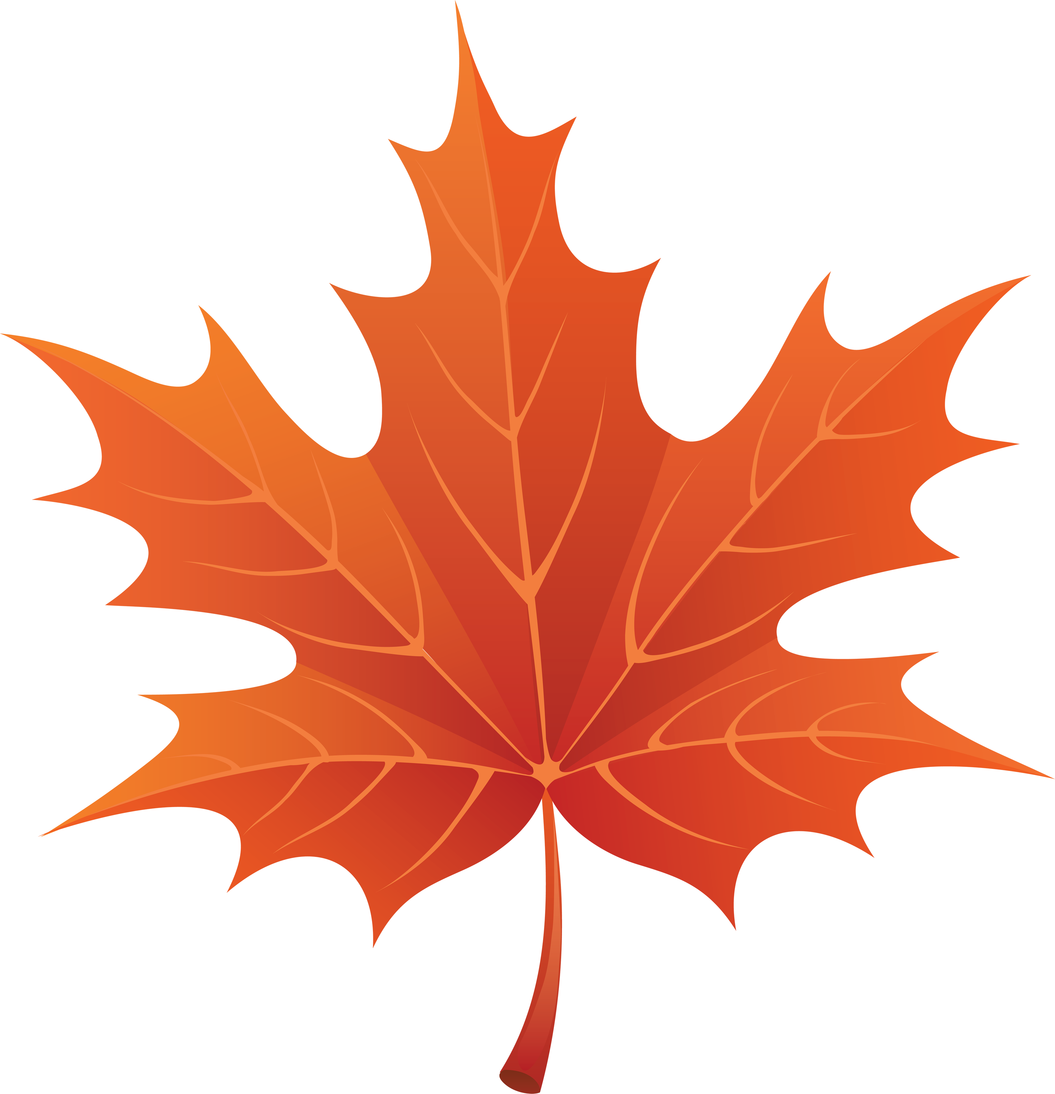 Clipart maple leaf.