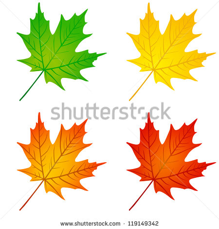 "green Maple Leaf"" Stock Photos, Royalty."