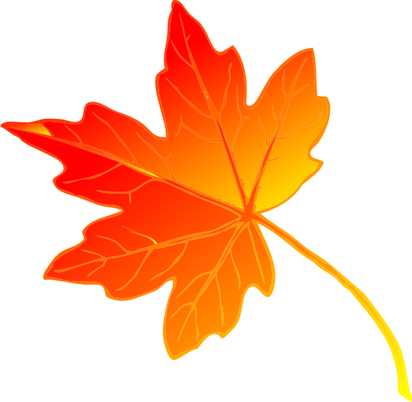 Maple leaf maple leaves clip art free clipart images 4.