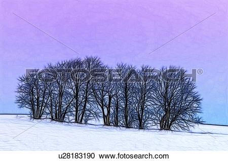 Stock Photography of Fractalius rendering of winter sugar maple.