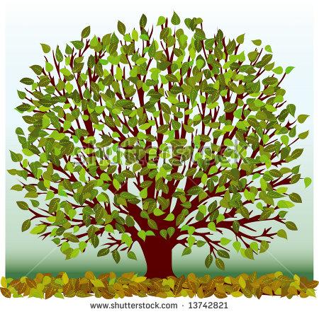 """""""sycamore Tree"""" Stock Photos, Royalty."""