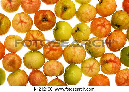 Stock Images of acerola k1212136.