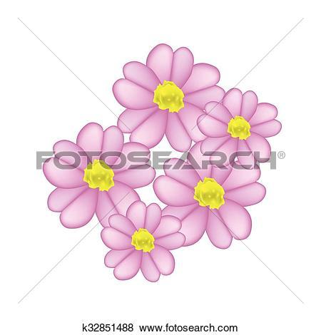 Clip Art of Beautiful Pink Yarrow Flowers or Achillea Millefolium.