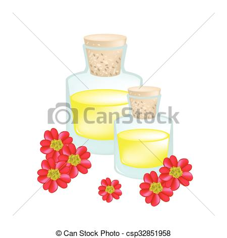 Clipart Vector of Red Yarrowor Achillea Millefolium with Essential.