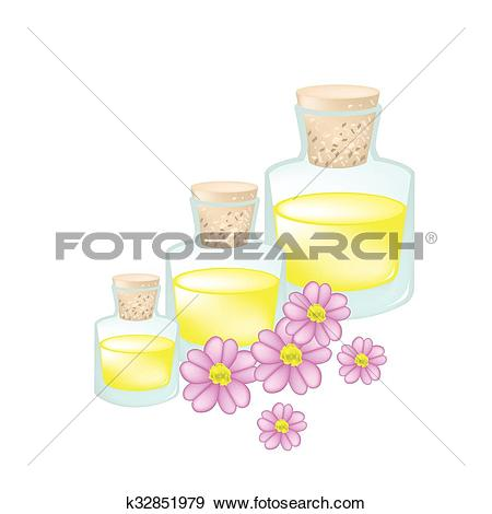 Clip Art of Pink Yarrow or Achillea Millefolium with Essential Oil.
