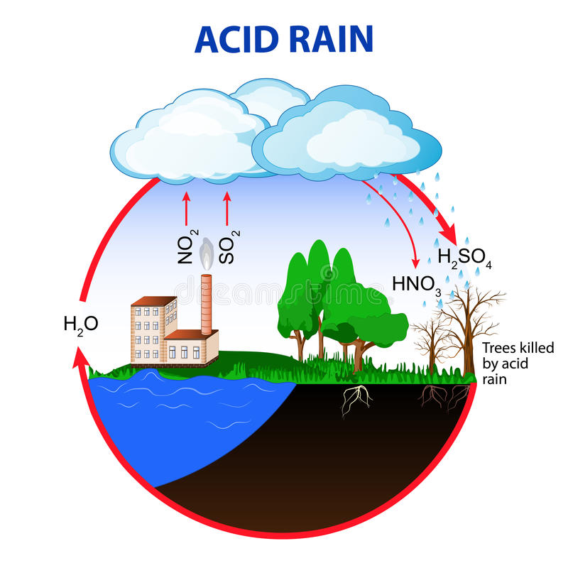 Acid Rain Stock Illustrations.